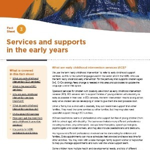 Services and supports in the early years