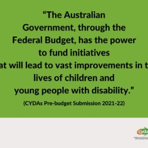 Address poverty for young people with disability and create a youth jobs plan